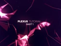 Plexus P1